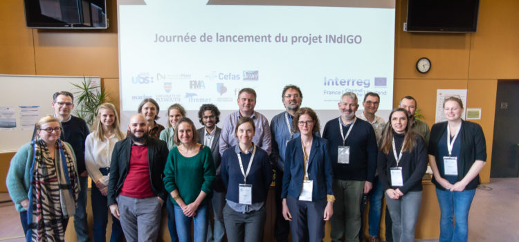 2nd Steering Committee Meeting of INdIGO project