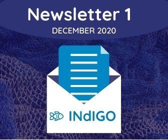 1st INdIGO newsletter