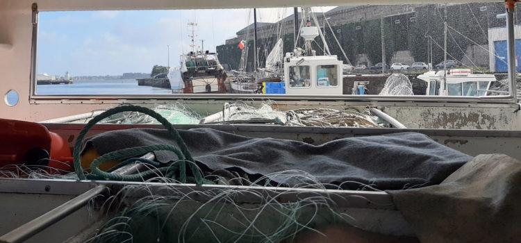 Fishermen Survey